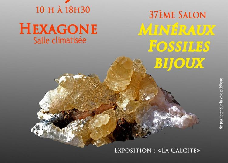 37ème Salon aux Minéraux et fossiles à Autun