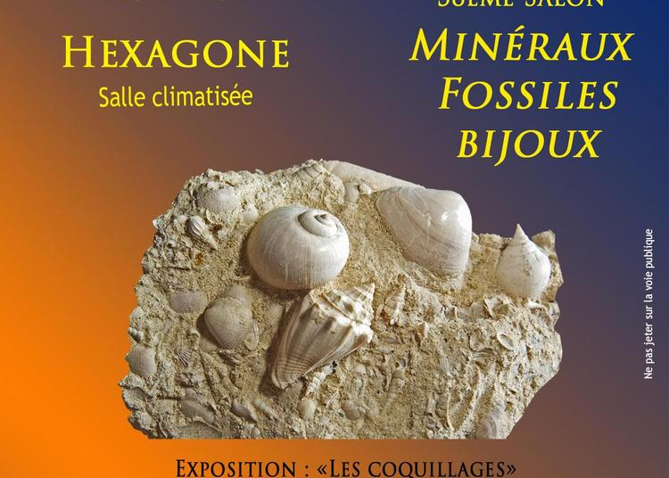 38ème Salon aux Minéraux et Fossiles à Autun