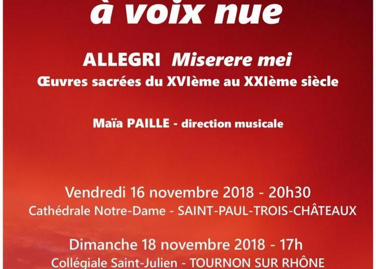 Ensemble Vocal  de Valence à voix nue à Saint Paul Trois Chateaux