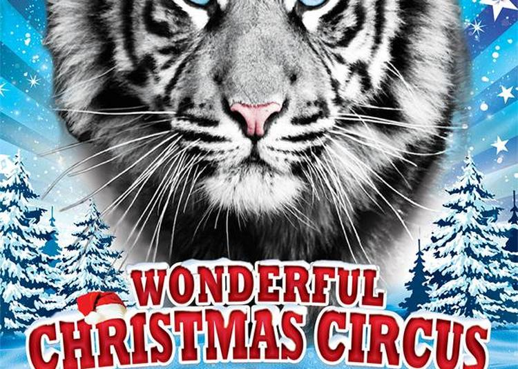1er grand cirque de noël de Caen | wonderful christmas circus