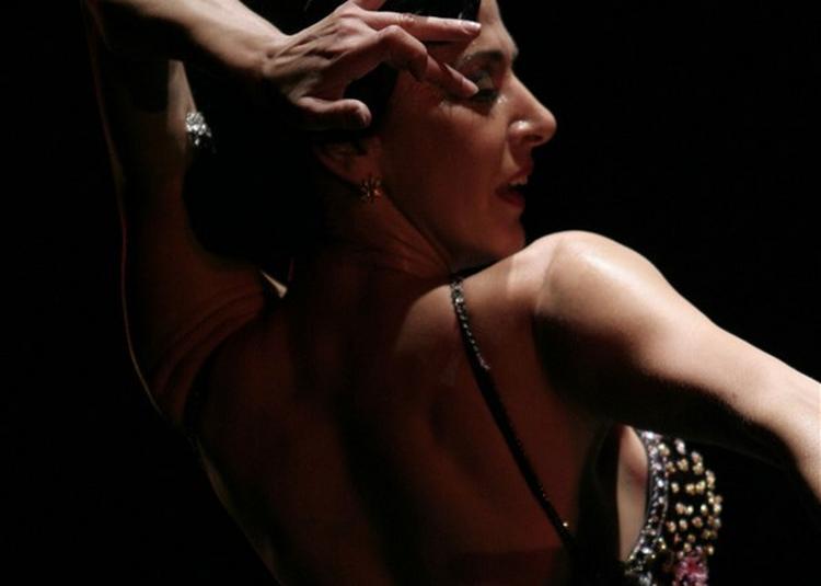 Esencia Flamenca à Saint Brice Sous Foret