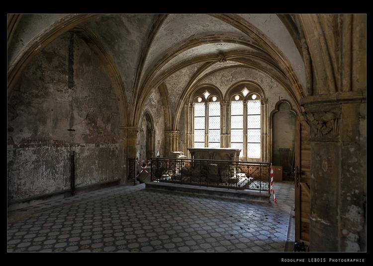 Etats De Pierres : Du Surgissement Des Formes à Metz