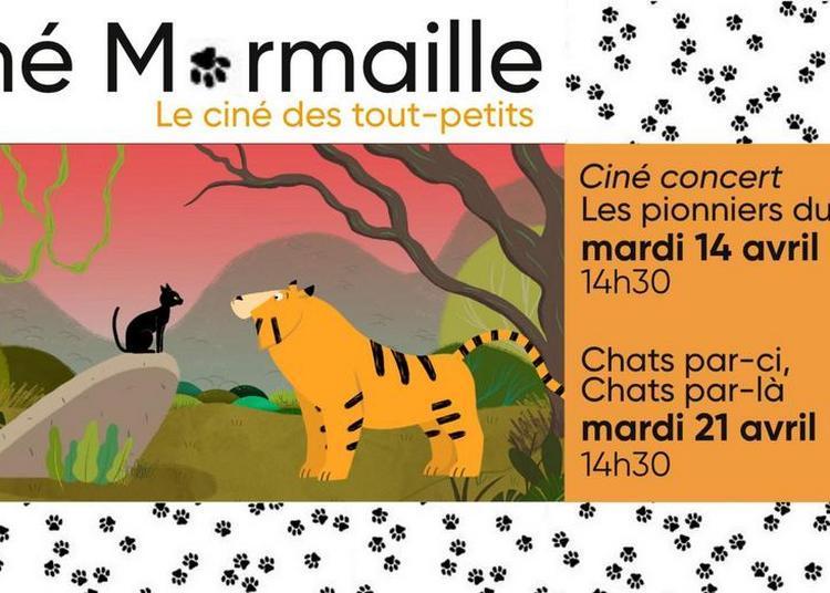 Ciné Marmaille - vacances d'Avril à Thourotte