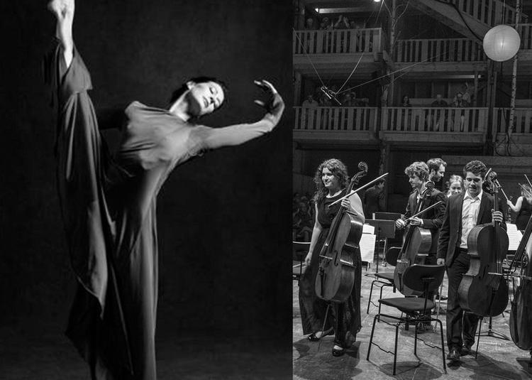 Evian Chamber Orchestra à Neuvecelle
