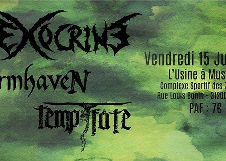 Exocrine // Stormhaven // Tempt Fate à Toulouse