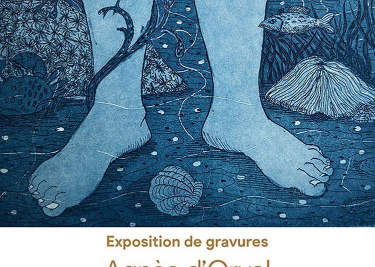 Expo de gravures d'Agnès d'Orval à Toulouse
