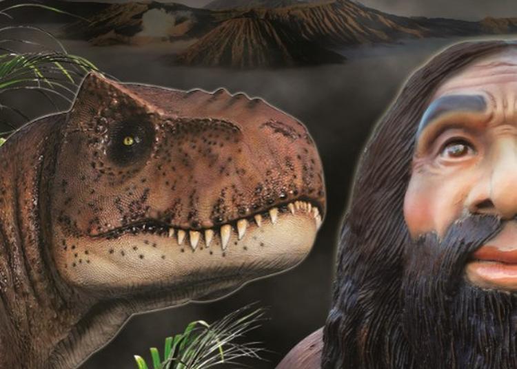 Expo Dinosaures & Préhistoire à Ancenis