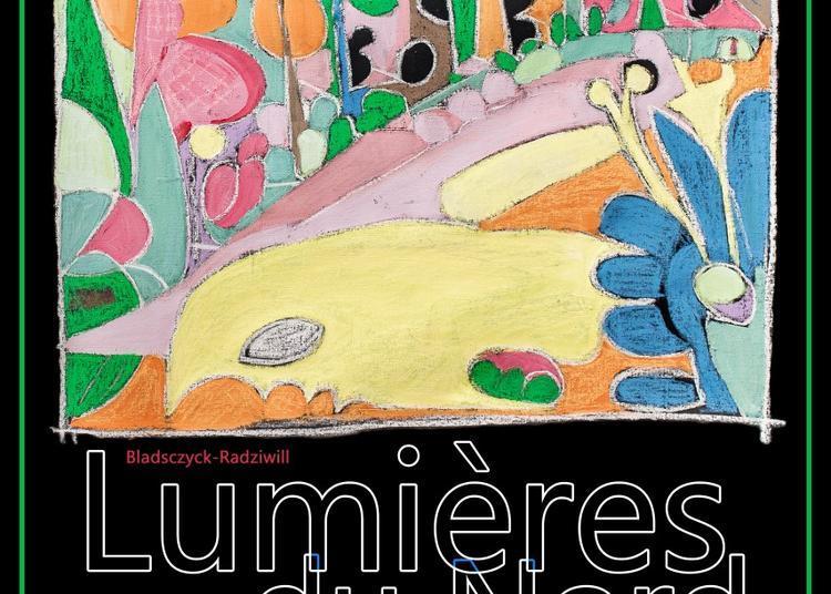 Peintures Bladsczyck-radziwill - Lumières Du Nord à Fontaine au Bois