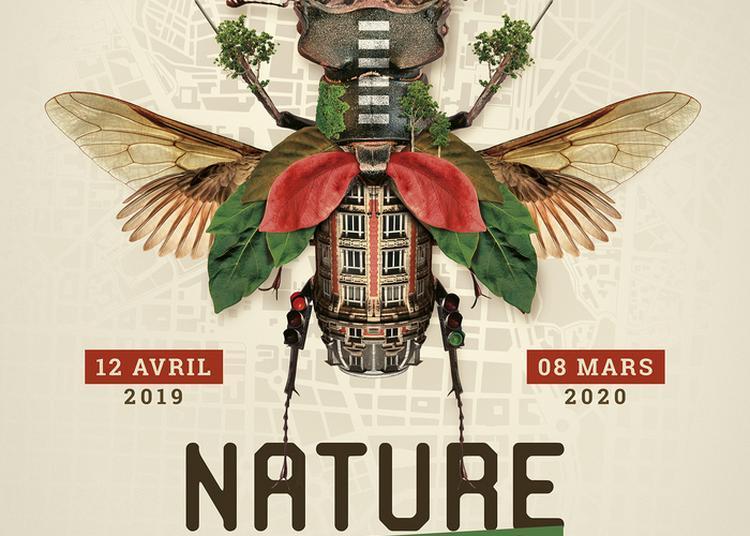 Exposition à Clermont Ferrand