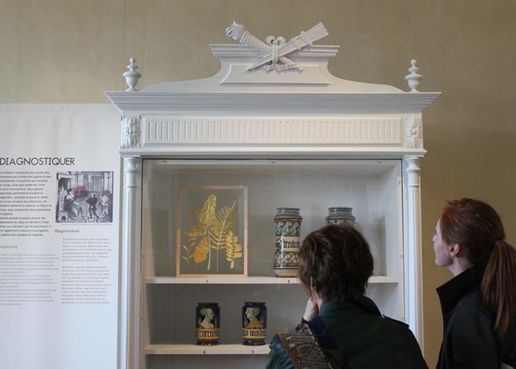 Exposition A Corps Et Âme, La Médecine À La Renaissance à Saint Vougay