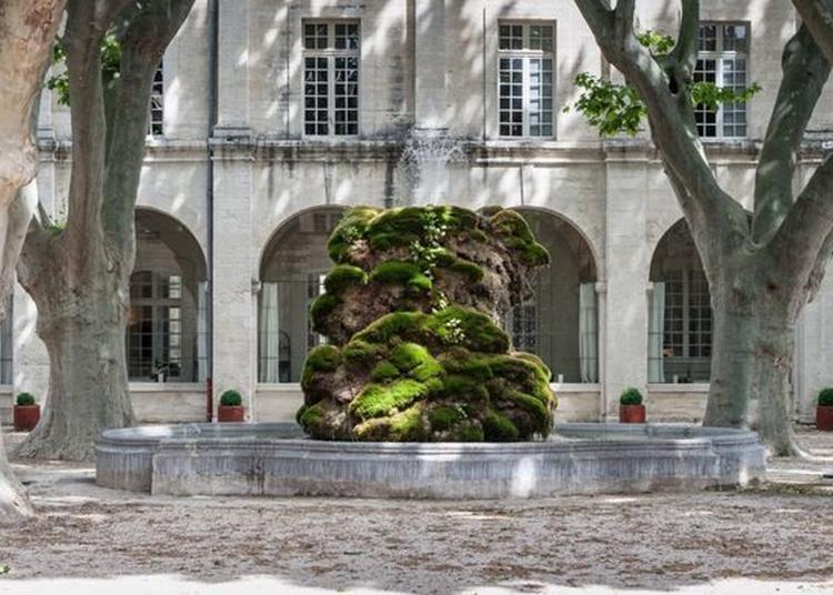 Exposition A Deux Au Jardin Par La Maca à Avignon