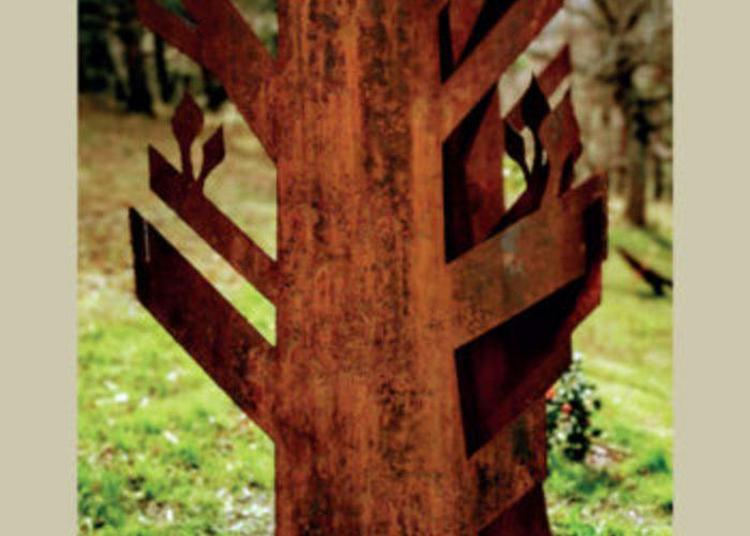 Exposition Arborescences De Patrick Desombre à Castelnou