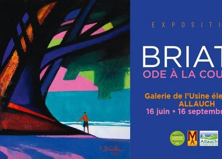 Exposition Briata, Ode à La Couleur à Allauch