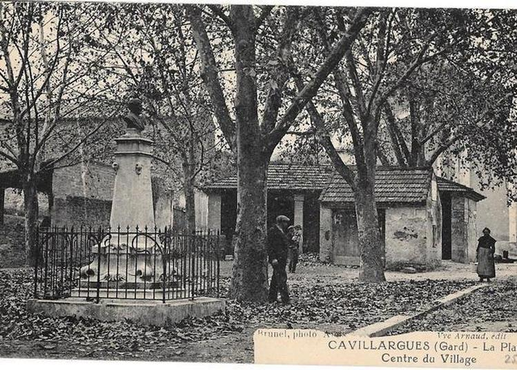 Exposition Cavillargues Et Son Patrimoine : La Place Étienne Brunel