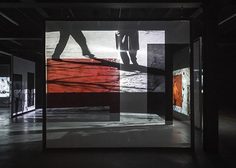 Exposition Cécile Bart, Effet d'hiver à Rennes