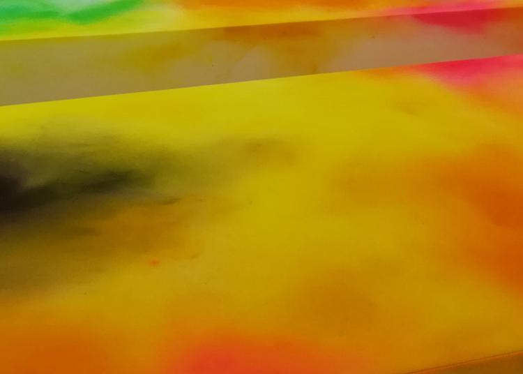 Exposition Colorée D'elsa Tomkowiak. à Tournon sur Rhone