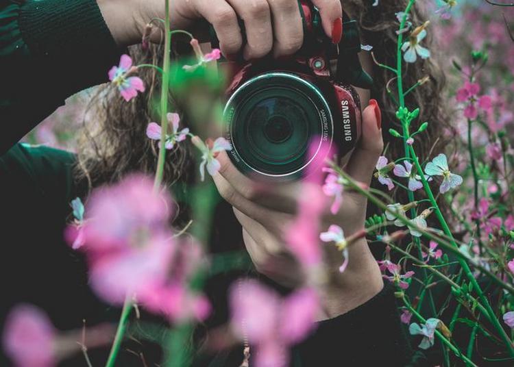 Exposition : Concours De Photographies à Lacanau