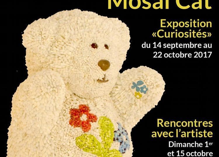 Exposition Curiosités - Mosaï'cat à Caden