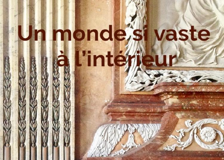 Exposition D'art Contemporain - Hôtel De Vogüé à Dijon