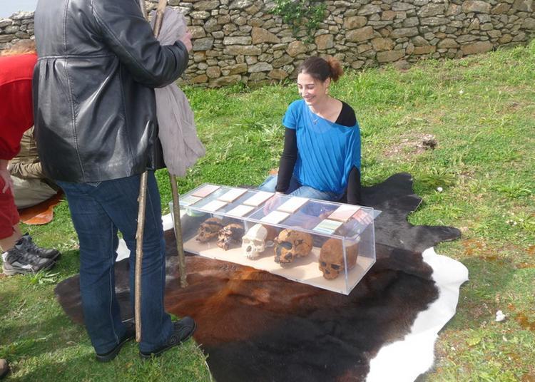 Exposition D'une Maquette De Maison Néolithique Et Jeu Sur L'évolution De L'homme à Plouhinec