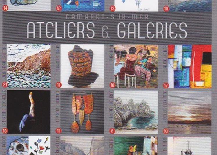 Exposition de dessins au crayon de couleur et de photos animalières à Camaret sur Mer