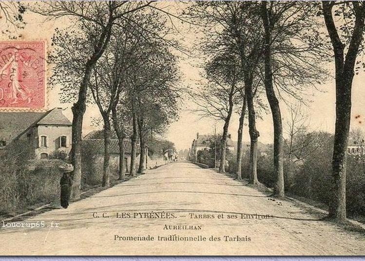 Exposition De La Route De Bours Au Caminadour ... à Aureilhan