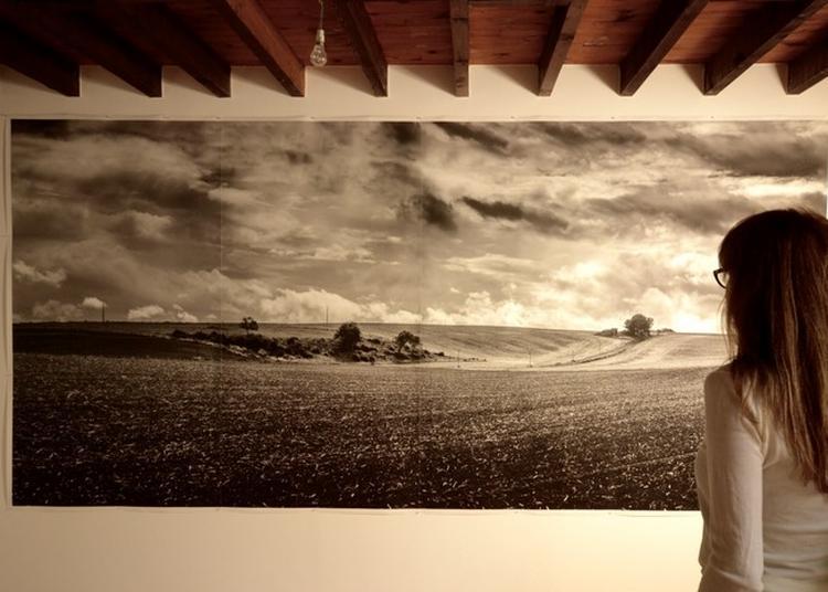 Exposition De Photographies Grand Format à La Ferte Milon