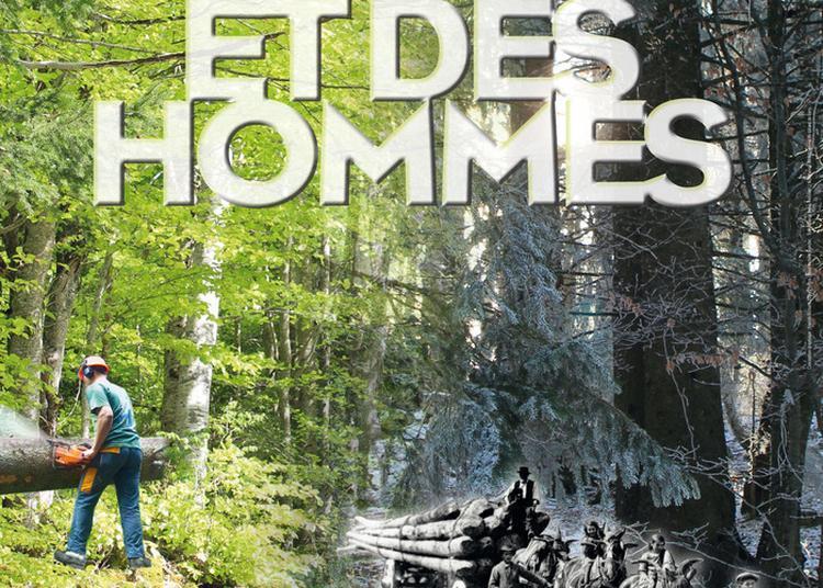 Exposition Des Forêts Et Des Hommes à Villard de Lans