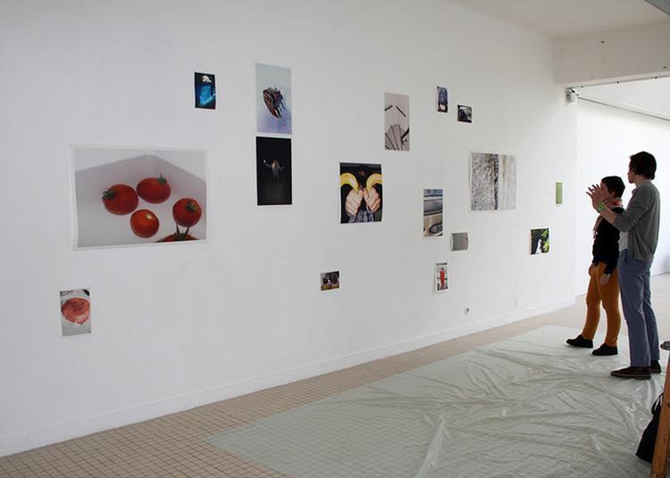 Exposition Des Oeuvres Des Diplômés 2017 De L'eesab - Site De Brest