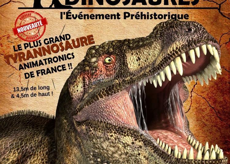 Exposition Dinosaures à Angouleme