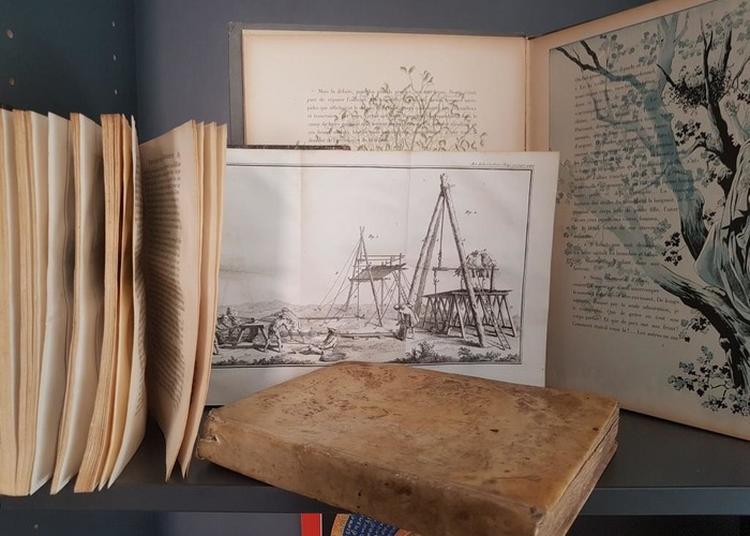 Exposition Du Fonds Patrimonial De La Médiathèque D'antibes à Antibes