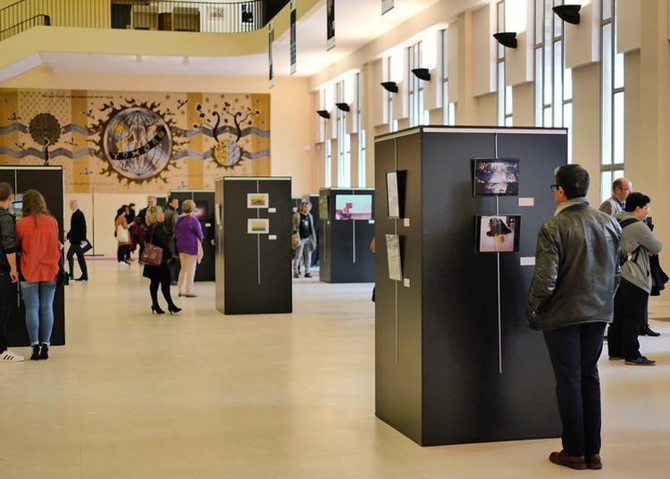 Exposition Du Frac À L'université · Photographies & Sculptures à Caen