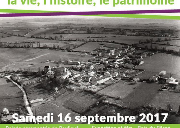 Exposition Et Film à Saint Laurent de Mure