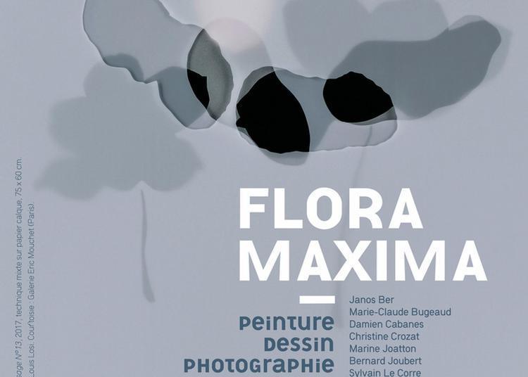 Exposition Flora Maxima à Bignan