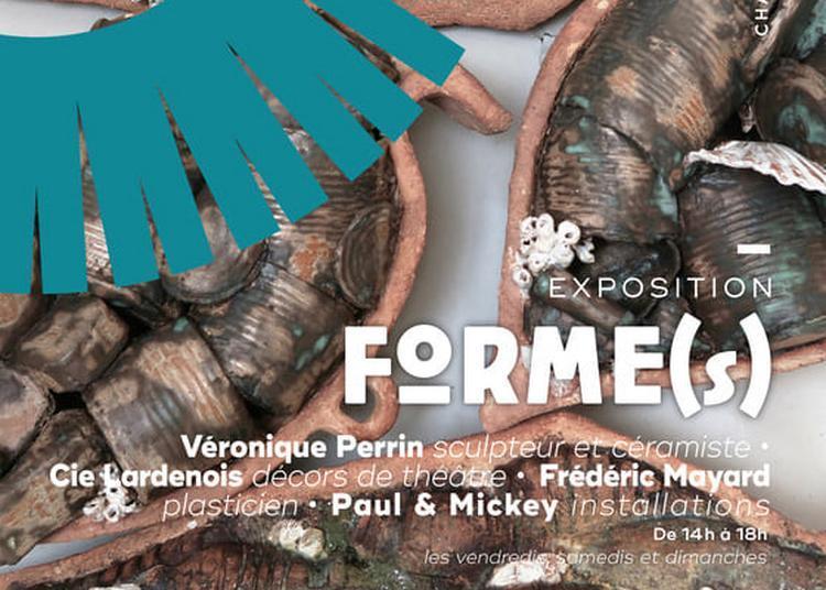 Exposition Forme(s) à Viviers