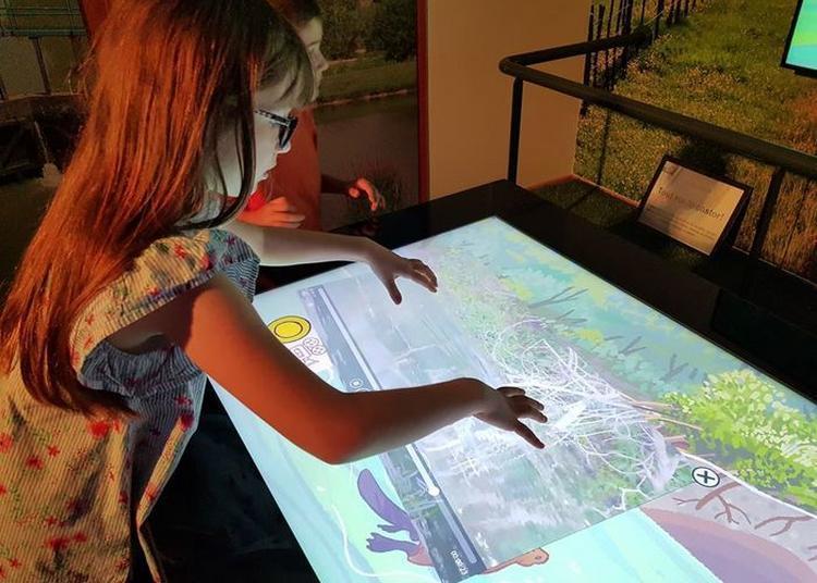 Exposition Interactive à Pont de Vaux