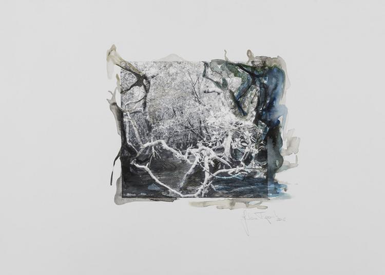 Exposition « Através Da Imagem » / « Par Le Biais De L'image » à Paris 14ème