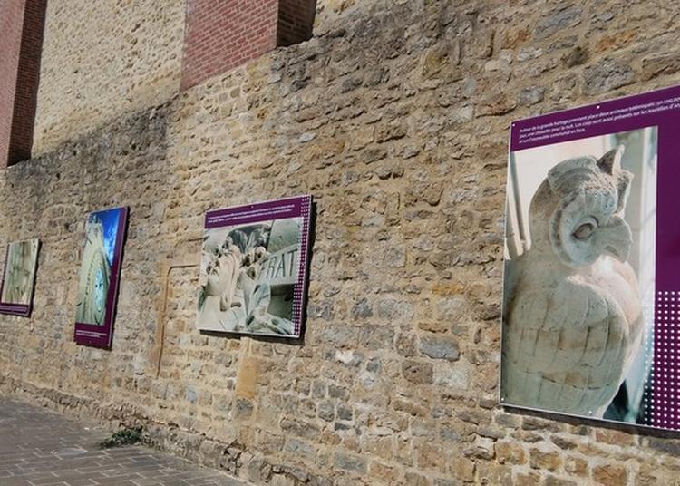 Exposition «l'hôtel De Ville À La Loupe» à Charleville Mezieres