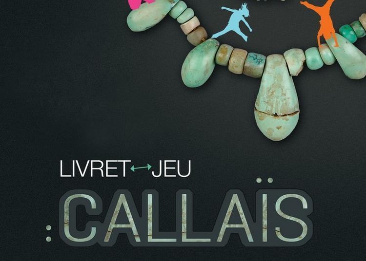 Exposition « La Parure En Callaïs Du Néolithique Européen » à Carnac