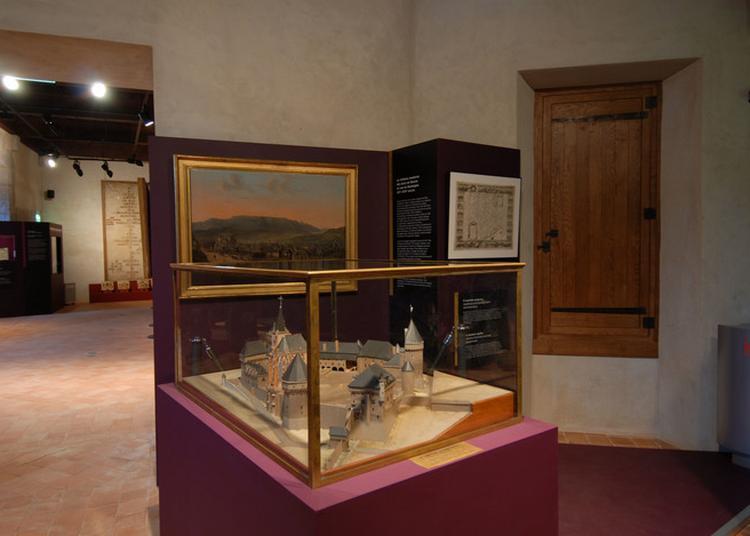 Exposition « Le Château, La Savoie, Dix Siècles D'histoire » à Chambery