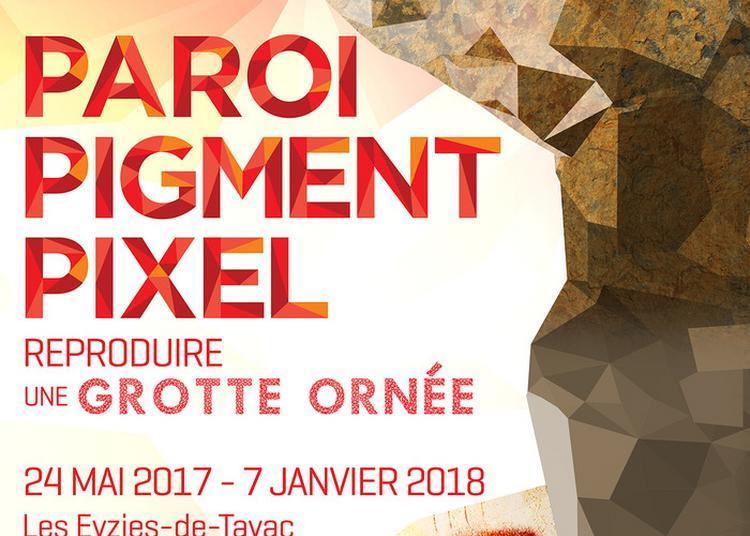 Exposition «paroi, Pigment, Pixel : Reproduire Une Grotte Ornée» à Eyzies de Tayac Sireuil