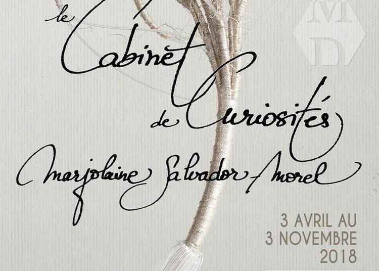 Exposition : Le Cabinet De Curiosités Marjolaine Salvador-morel à Argentan