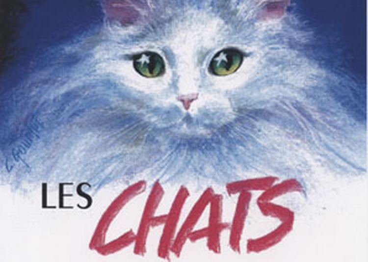 Exposition Les Chats à Paris 1er