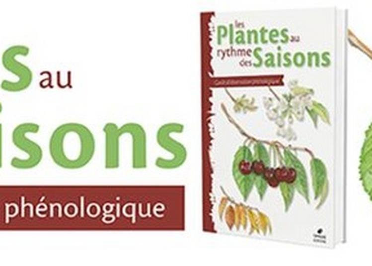 Exposition Les Plantes Au Rythme Des Saisons à Antibes