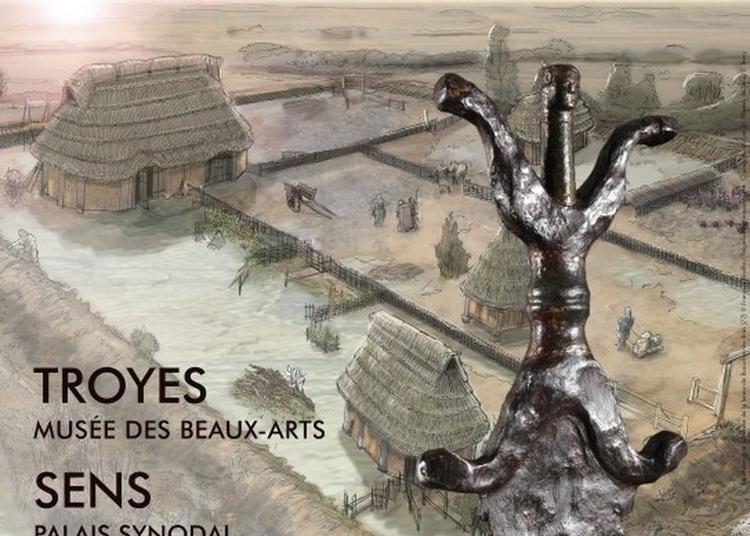Exposition Les Sénons. Archéologie Et Histoire D'un Peuple Gaulois à Troyes