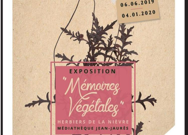 Exposition Mémoires Végétales, Herbiers De La Nièvre à Nevers