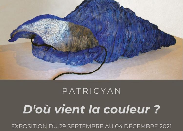 Exposition Patricyan : « D'où vient la couleur ? » à Mont de Marsan