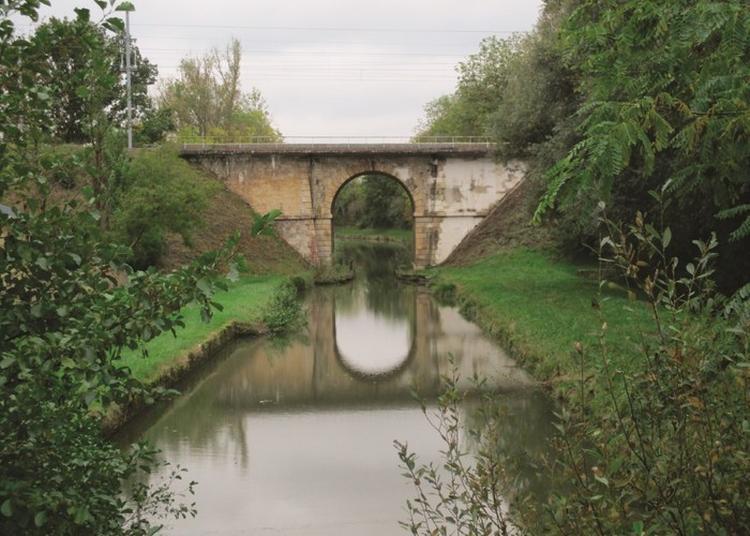 Exposition Photo  Mon Cher Canal, Sur Le Canal De Berry à Orléans