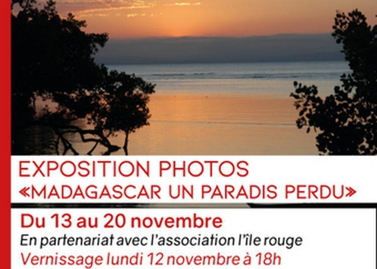Exposition Photos |madagascar Un Paradis Perdu | à Macon