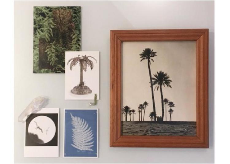 Exposition Plante Fiction De L'artiste Mélina Farine à Metz
